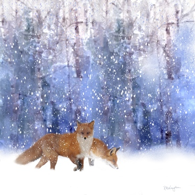 foxes-in-the-snow-jpg