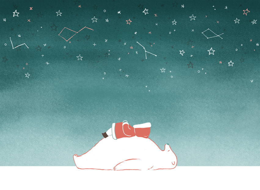 polar_bear_eskimo_night_stars.jpg