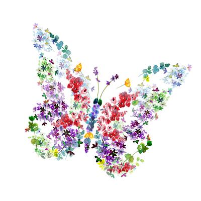 butterfly-floral-2-copy-copy-jpg