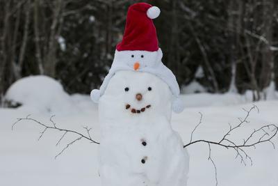 mp-funny-snowman-jpg