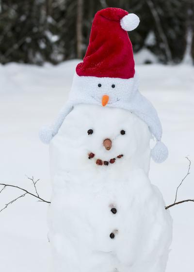 mp-snowman-together-jpg