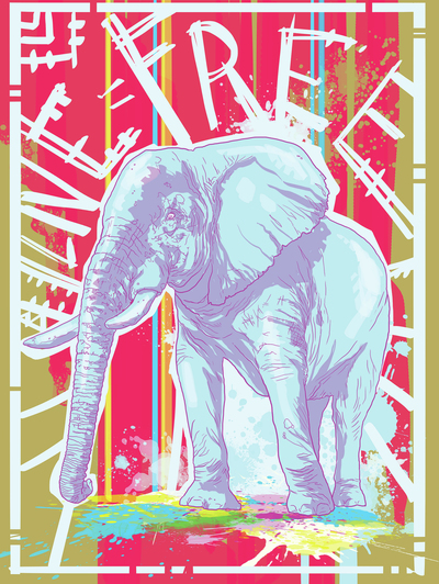 elephant-graffiti-low-jpg