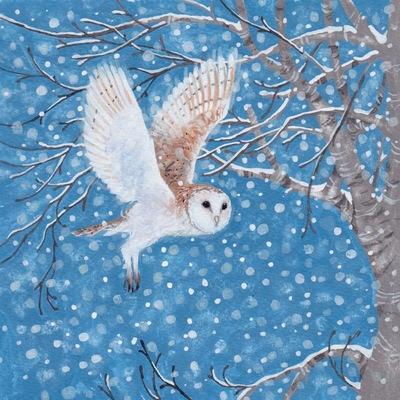 snowy-owl-jpeg