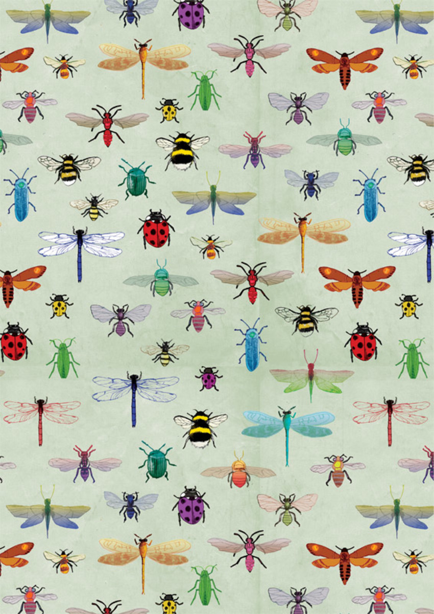 db-insects-available.jpg
