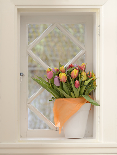 tulips-in-a-window-jpg