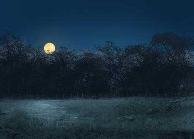 moon-ltolton-jpg