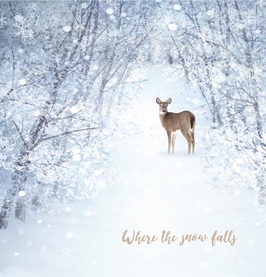 hw deer card 2.jpg
