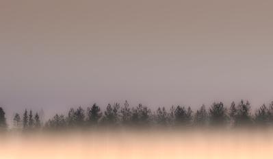 mp-dine-forest-stripe-jpg