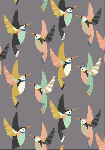 colour-bird-diary-1-01-jpg