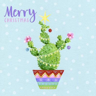 christmas-cactus-star-jpg
