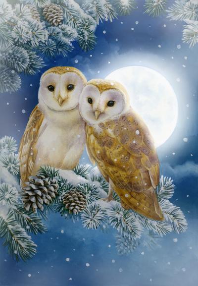 la-moonlit-owl-s-jpg