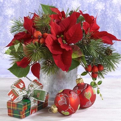 christmas-greeting-card-lmn58338-jpg