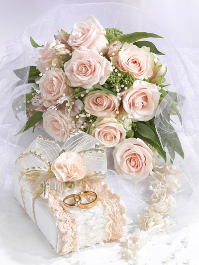 wedding-greeting-card-female-lmn55770-jpg