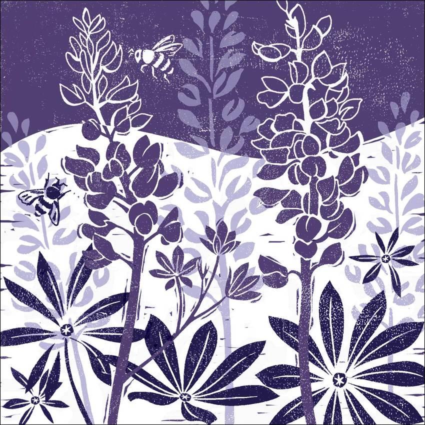 Purple Lino lupins.jpg
