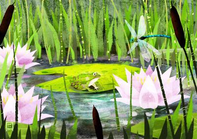 frog-jpg-8