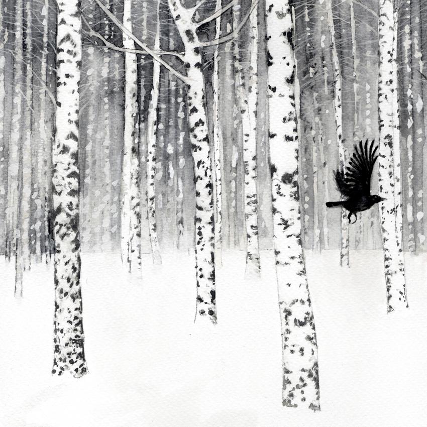 Birch trees snow blackbird.jpg