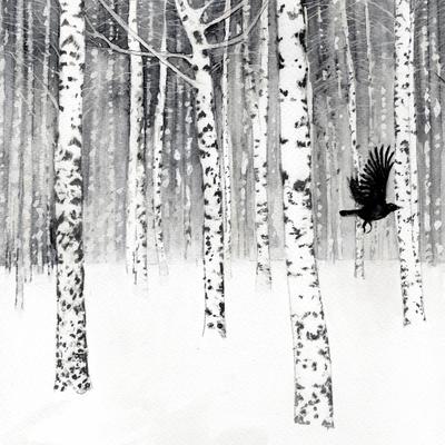 birch-trees-snow-blackbird-jpg