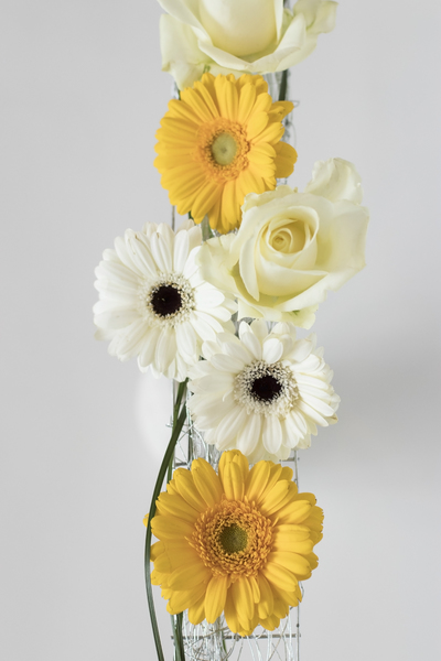 mpj-yellow-white-flowers-jpg