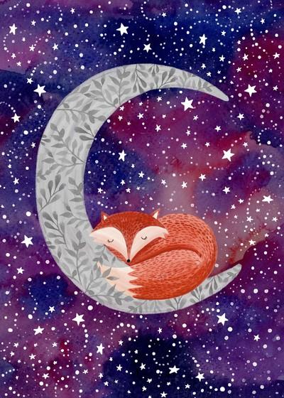 felicity-french-fox-moon-night-jpg