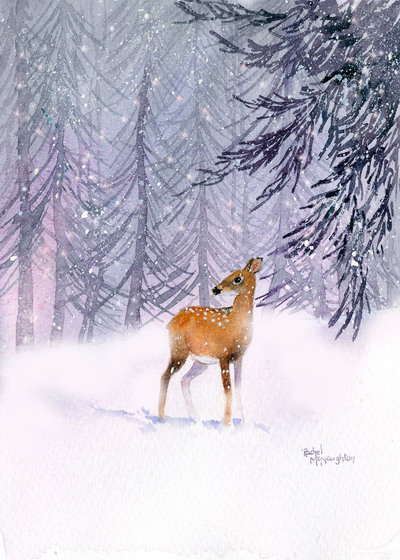 fawn-in-the-forest-jpg