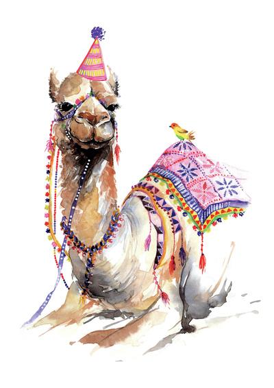 00249-dib-camel-jpg