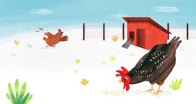 m-calderon-chicken-jpg