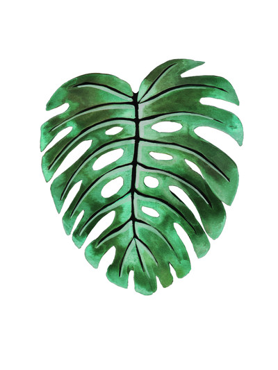 tropical-wall-art-leaf-philodendron-jpg