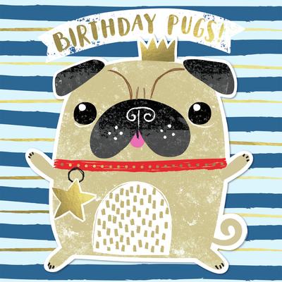 pug-dog-cute-jpg