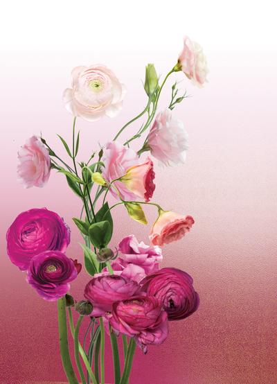 lsk-ombre-floral-pinks-to-pastels-jpg