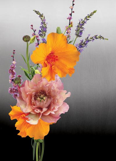 lsk-ombre-golden-hibiscus-floral-jpg