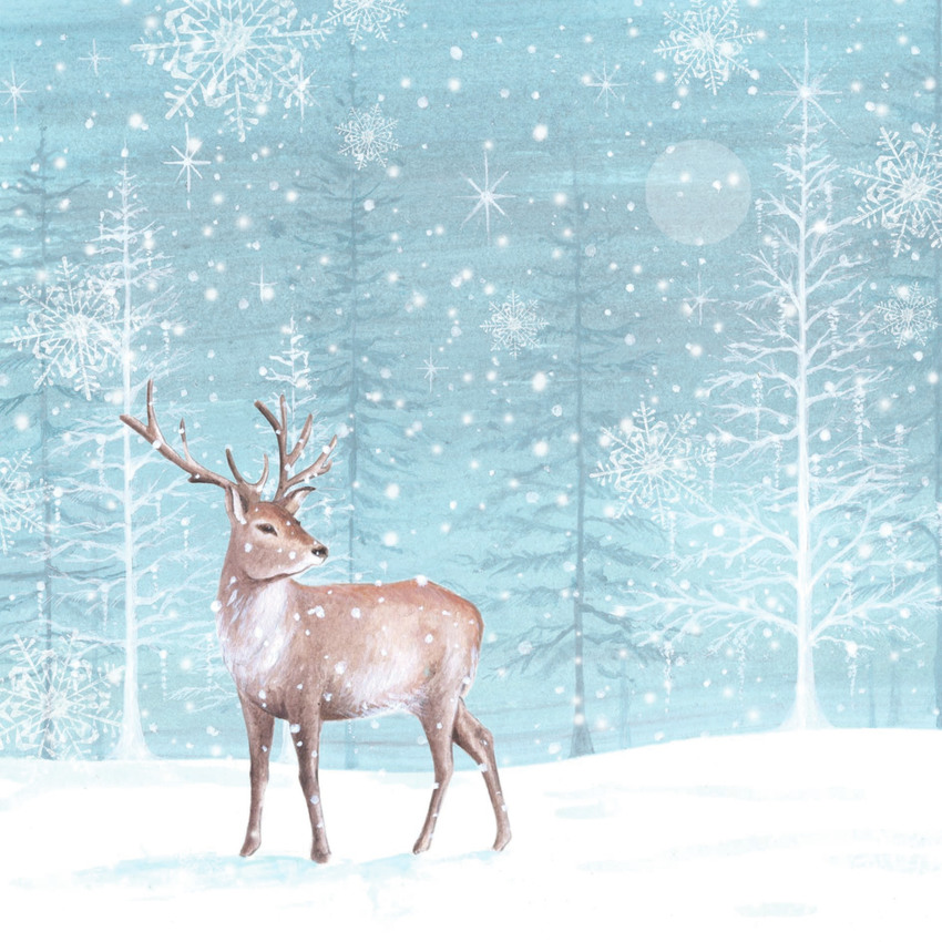 00054_DiB_Deer_in_blue_christmas_trees.jpg