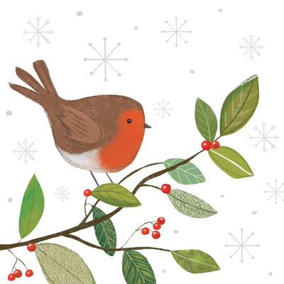 christmas-robin-jpg-6