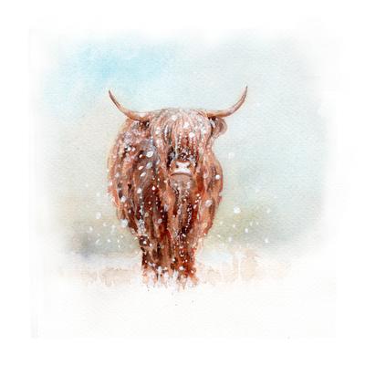 highland-cattle-snow-small-jpg