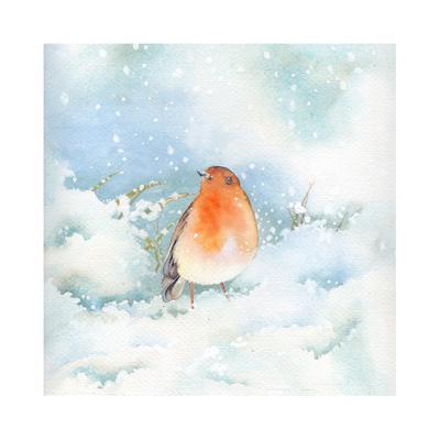 robin-snow-small-jpg