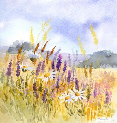 meadow-flowers-jpg-2