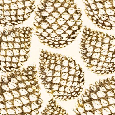 pine-cones-01-jpg