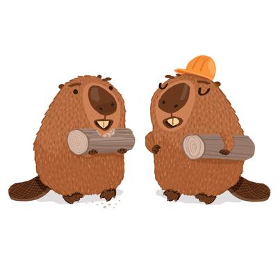 beavers-building-jpg