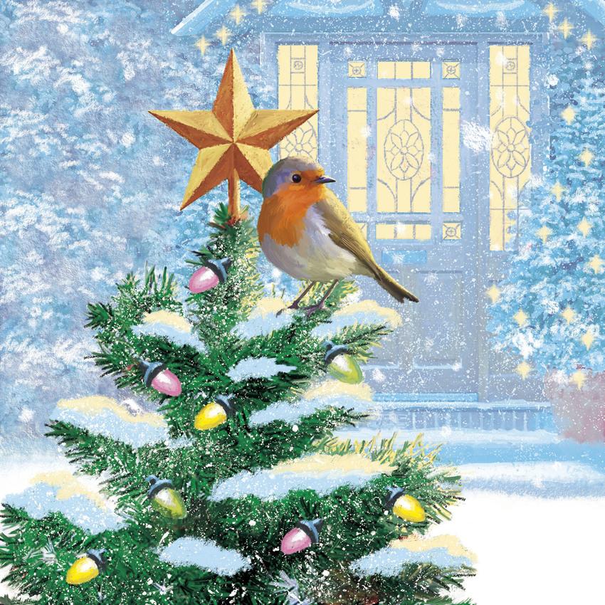 Robin on Xmas tree copy.jpg