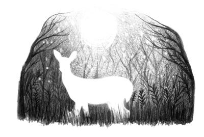 white-deer-jpg