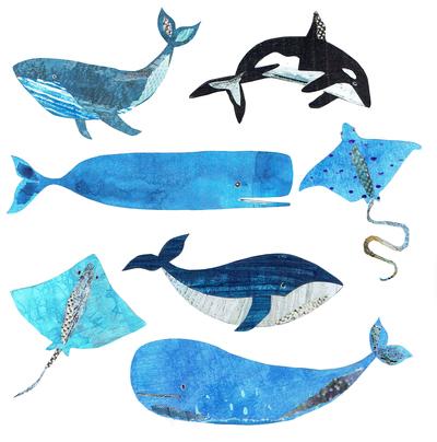 l-k-pope-new-whales-stingwray-art-jpg
