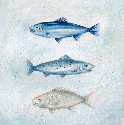 fish-sea-ocean-jpeg