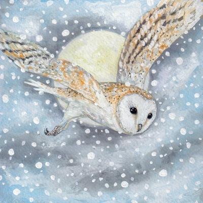 owl-and-moon-jpeg