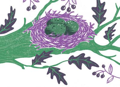 birds-nest-in-tree-jpg