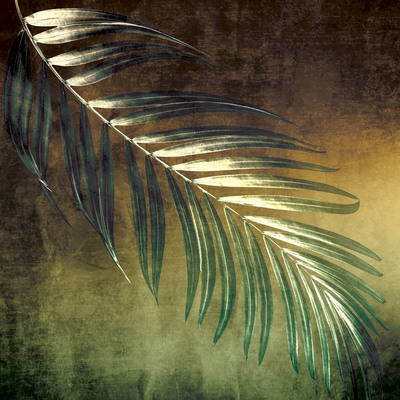 lsk-palm-house-tropical-palm-jpg