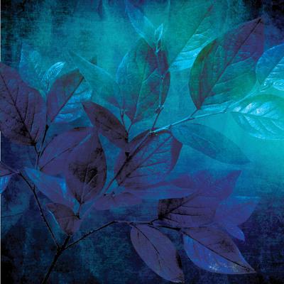 lsk-thoughtful-home-cyanotype-leaf-jpg