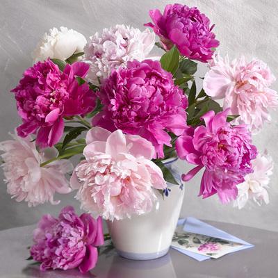 floral-still-life-greeting-card-lmn28950-jpg