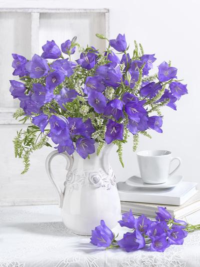 floral-still-life-greeting-card-lmn61706-jpg