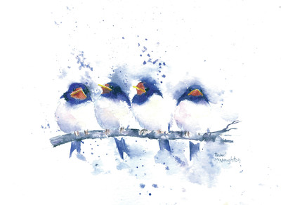 baby-swallows-jpg