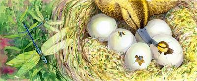 corke-chic-duck-nest-dragonfly-nest-spring-easter-jpg