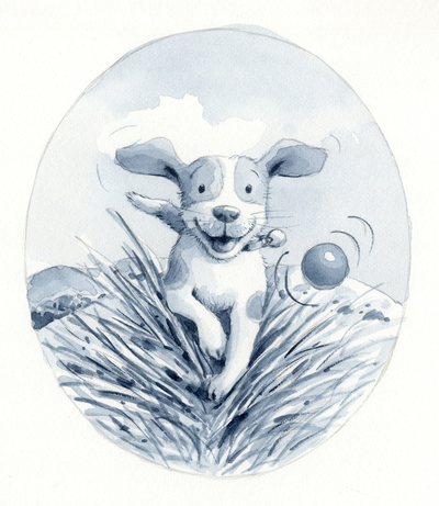 corke-puppy-play-jpg